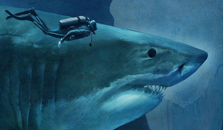 Акулу мегалодон можно отметить как бесспорного победителя среди вымерших видов в списке гигантов морского дна