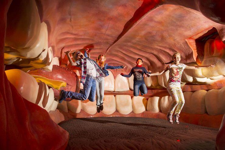 Внутри несколько этажей, проходя по которым оказываешься внутри разных органов