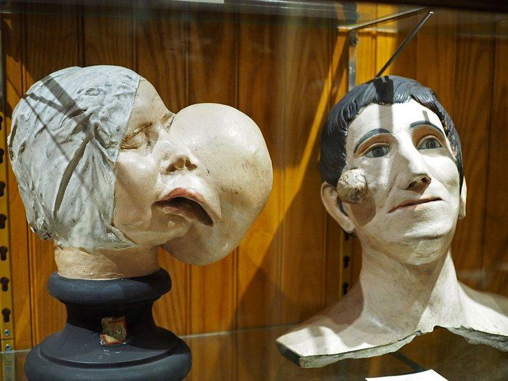Музей истории медицины Мюттера